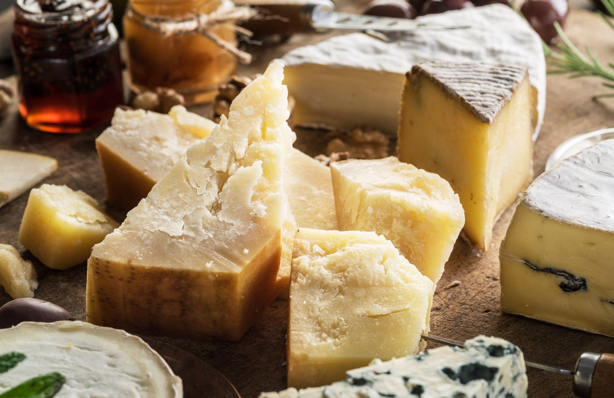 Dairy Exporter Case Study Lifestyle