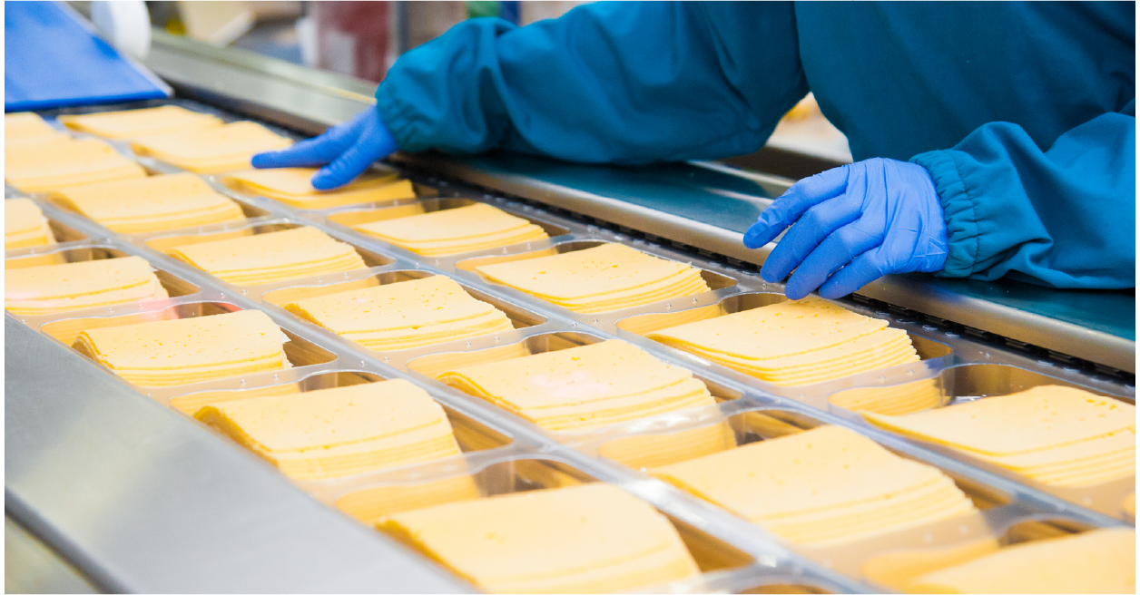 Dairy Cheese Production